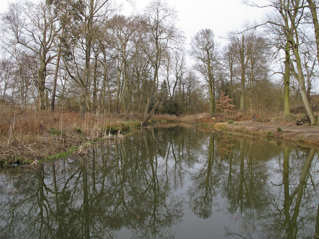 Pond in Aubrey Buxton Nature Reserve