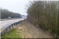 SK0336 : The A50 with wooded embankment by David Lally