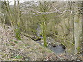 SD9501 : Greenhurst Clough Brook by John Topping