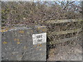 TL8568 : Mark on road bridge over disused railway by b davies
