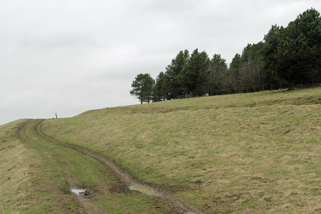 The Footpath across Calton Pastures