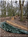 SP8924 : Playground in the woods by Philip Jeffrey
