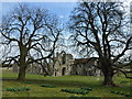 TF8114 : A late spring at Castle Acre Priory by Richard Humphrey