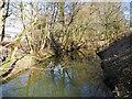 SJ9284 : Poynton Brook by John Topping