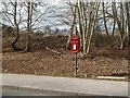 NT5135 : A post box at Easter Langlee, Galashiels by Walter Baxter