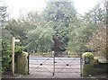 NZ0284 : Gated crossing over the B6342 road by Stanley Howe