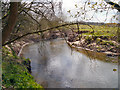 SJ7485 : River Bollin near Castle Hill by David Dixon