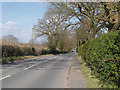 SJ6984 : West Lane (B5159) High Legh by David Dixon