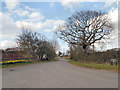 SJ7083 : Broadoak Lane, High Legh by David Dixon
