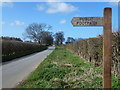 TF8121 : Rougham Road near Great Massingham by Richard Humphrey
