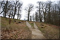 TQ5354 : Greensand Way, Knole Park by Nigel Chadwick
