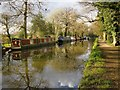 TQ0558 : Moorings on the Wey Navigation, above Pyrford Lock : Week 16