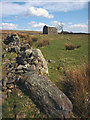 NY5808 : Ruined wall and barn above Birk Beck by Karl and Ali