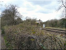 SJ9493 : Railway line near Thistley Fields by Gerald England