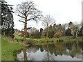 SJ8244 : Keele Hall and Lake 1 by David Emley