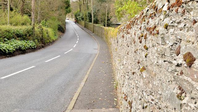 Boundary wall, Ballymacormick, Bangor