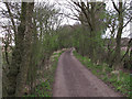TL8126 : Byway to Coppy Wood by Roger Jones