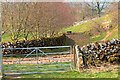 SK1257 : Gate, Narrowdale by Mick Garratt