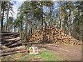 NN8614 : Log pile, Upper Lairochs Wood by Richard Webb