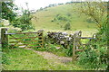SK2059 : Bridleways in Gratton Dale by Graham Horn