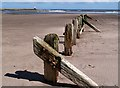 NU0051 : A groyne at Spittal : Week 18