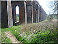 TQ3228 : Balcombe Viaduct by Ian Yarham