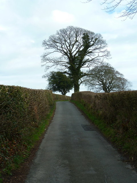 Road from Haverbrack to Beetham