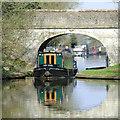 SJ8513 : A Songbird under Dirty Lane Bridge, Wheaton Aston : Week 17