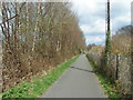 SX5894 : On the Granite Way cycle route, looking towards Okehampton railway station by Rob Purvis