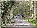 NZ1759 : Dog walkers on the Derwent Walk : Week 18