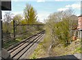 SJ9595 : Railway behind Foxwood Drive by Gerald England