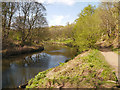 SD7406 : Moses Gate Country Park, River Croal by David Dixon