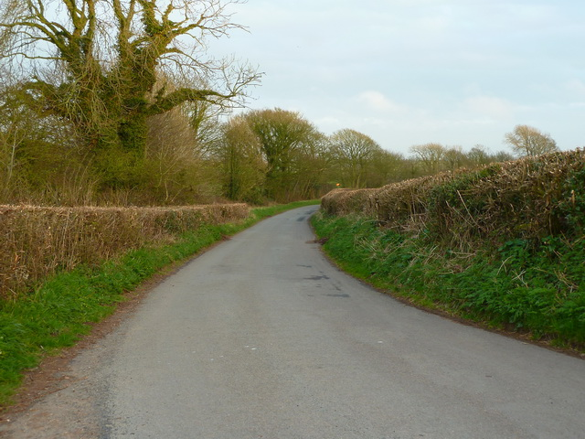 Greystone Lane
