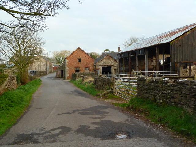 Greystone Lane, Dendron