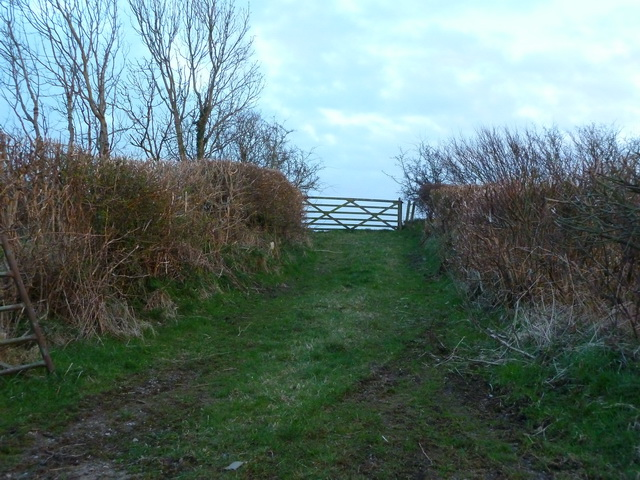 Track off Stainton Lane