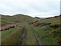 SN7678 : Looking downhill on the track through Tymawr by John Lucas