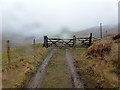 SN7678 : Back at the entrance to Tymawr farm by John Lucas