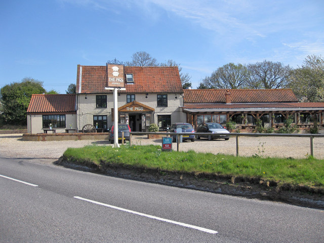 The Pigs At Edgefield Pauline E Geograph Britain And