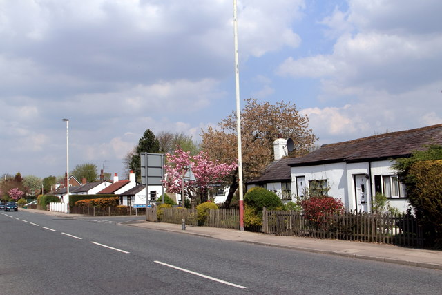 Cottages on the east side of Mill Lane, Churchtown
