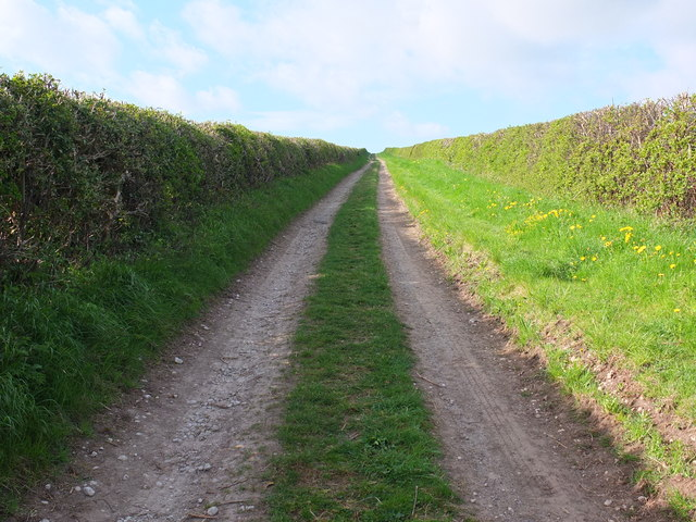 A track forming part of the Ebor Way