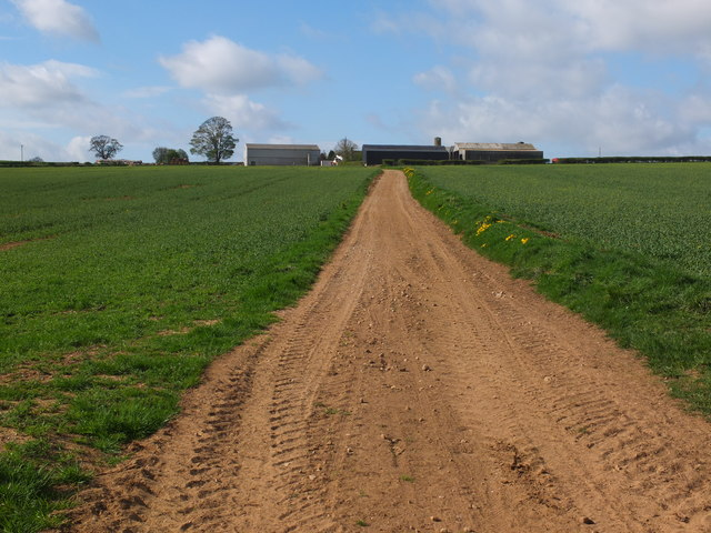 The track leading to Howthorpe Farm