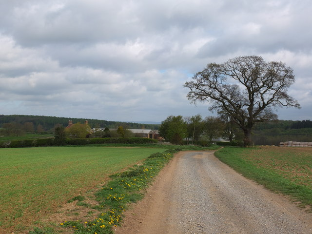 Looking north towards Howthorpe Farm