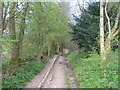 SK2269 : Bridleway towards Manners Wood and Ballcross Farm by John Slater