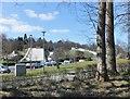 NS5563 : Dry ski slopes, Bellahouston Park by Barbara Carr