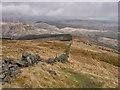 NN9603 : North-east ridge of Innerdownie : Week 20
