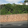 SX9473 : Sandstone-faced retaining wall, Dawlish Road, Teignmouth by Robin Stott