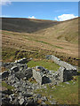 NY4608 : Sheepfold above Wren Gill, Longsleddale : Week 20