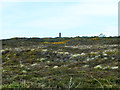 SW7050 : Rough ground near Wheal Coates by Robin Webster