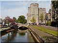 TR1458 : River Great Stour, Westgate by David Dixon
