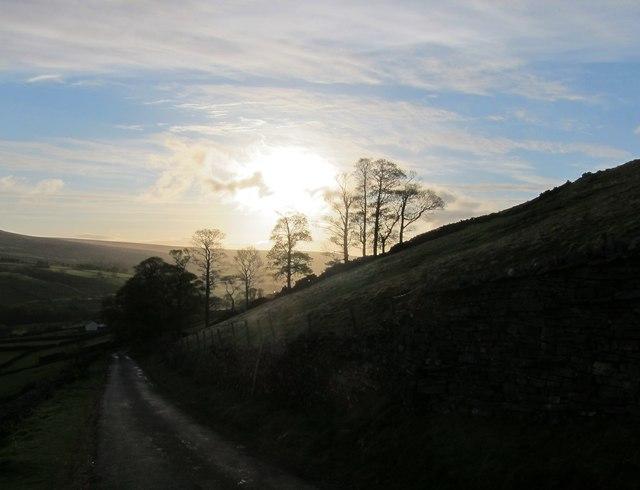 Near Feetham Holme - early morning